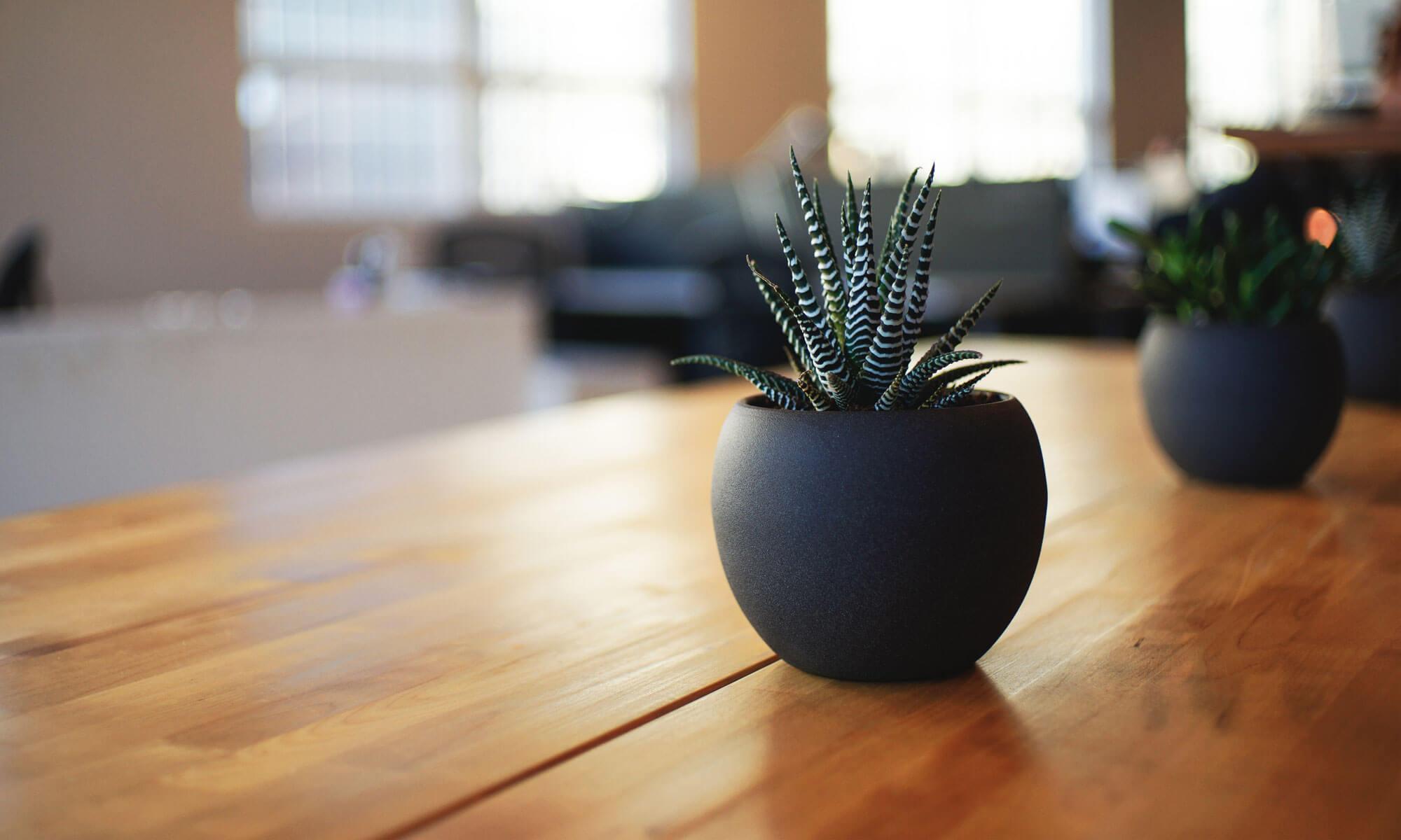 Möbel einlagern in düsseldorf leicht gemacht